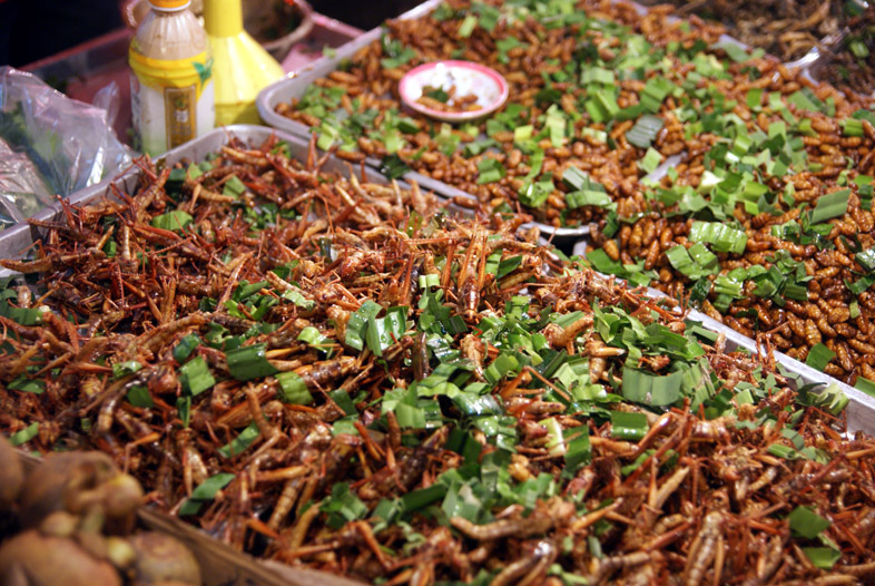 Ночной рынок Паттайя - жареные кузнечики