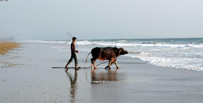 Гоа-пляж Беталбатим