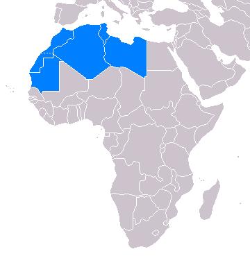Страны арабского Магриба на карте Африки