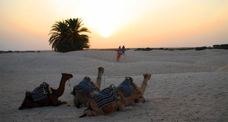 Тунис. Пустяня Сахара