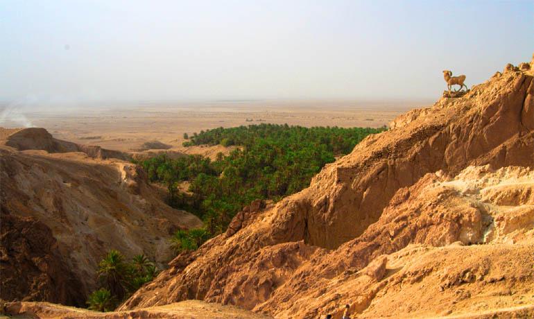 Вид на пустыню Сахару с Тунисского хребта