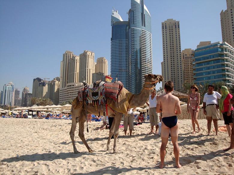ОАЭ - Дубай